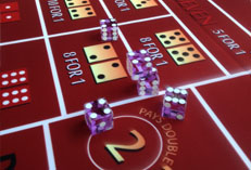 Casino Party Events rental Craps DICE, Craps DICE for rent Party Kings in Vancouver BC